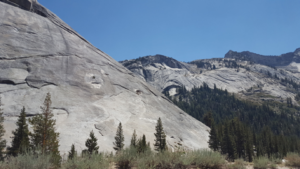 Yosemite's sculpted granite