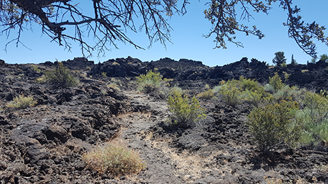 Day 2 - Lava Beds NM